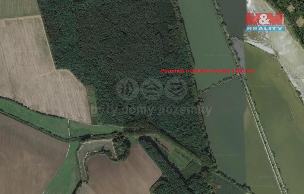 Prodej, les, 2260 m², Dolní Bojanovice