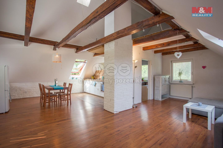 Prodej, rodinný dům, 180 m², Dolní Domaslavice