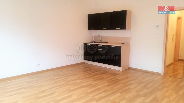 Pronájem, byt 1+kk, 40 m2, Ostrava, ul. Jantarová