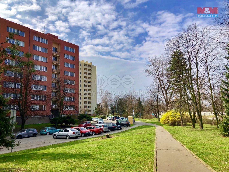 Prodej, byt 1+1, Ostrava, ul. Lechowiczova