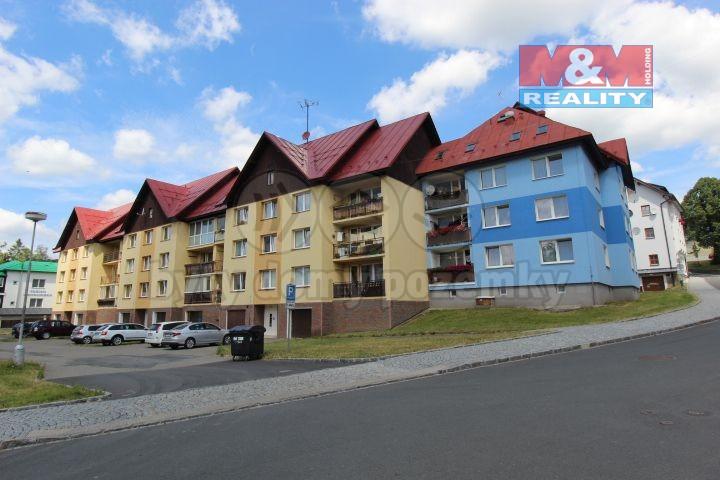 Prodej, byt 3+1, 62 m², Železná Ruda, ul. U Řezné