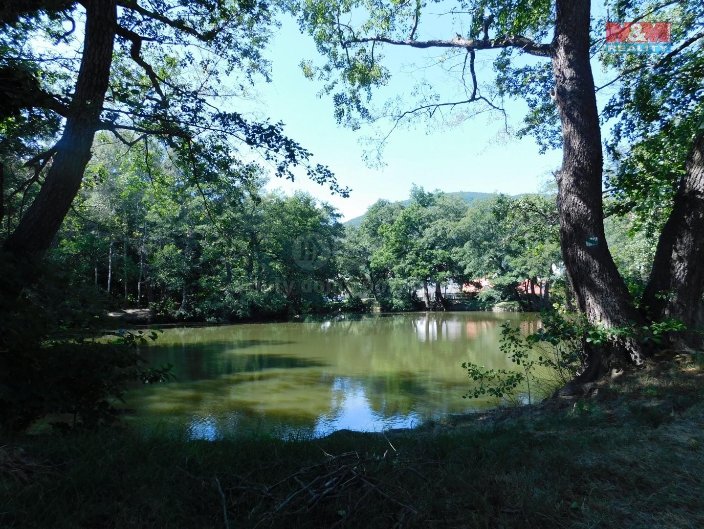 Velký tovární rybník za domem