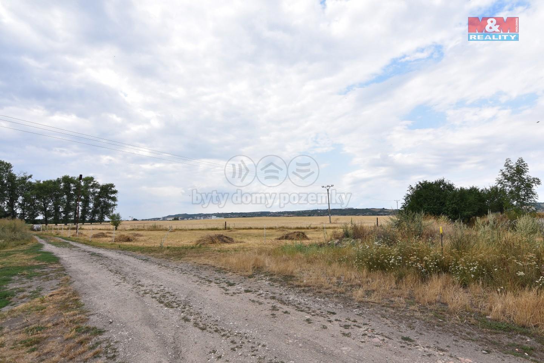 Prodej, stavební parcela, 1606 m², Pěčice