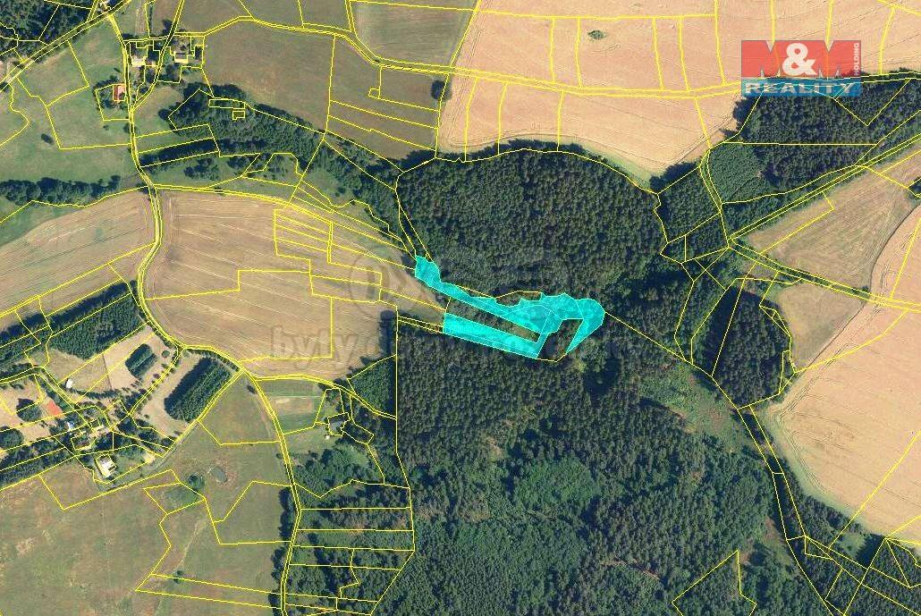 Prodej, les a louka, 8337 m2, Dědová