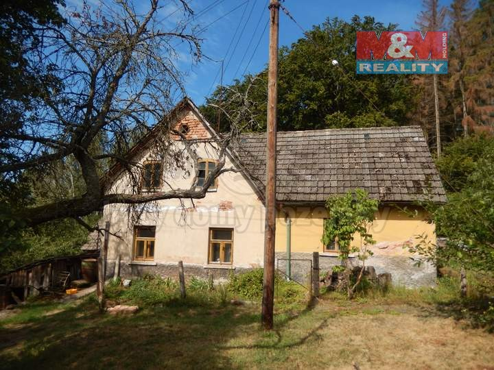 Prodej, chalupa, Borovnička