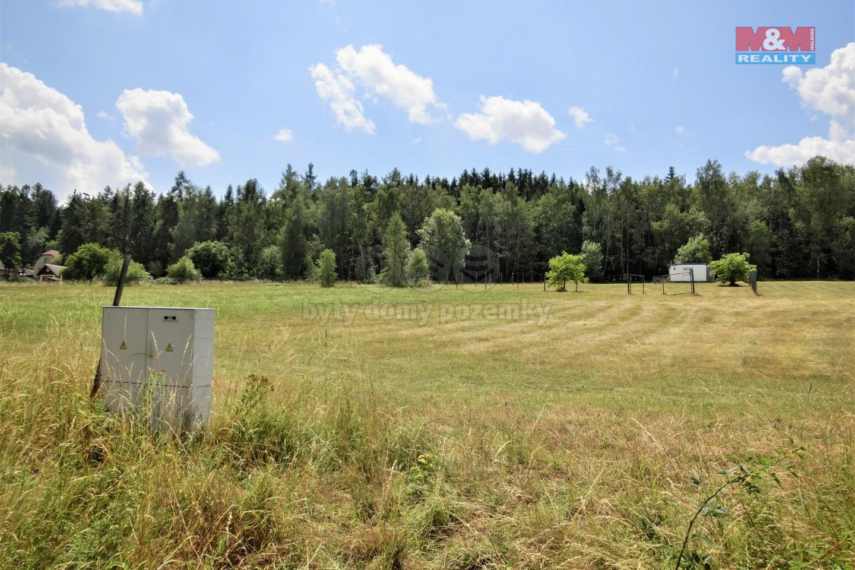Prodej, pozemek, 2963 m2, Heřmaničky