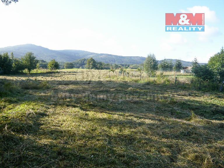 Prodej, pozemek, 5631 m2, Černá Voda