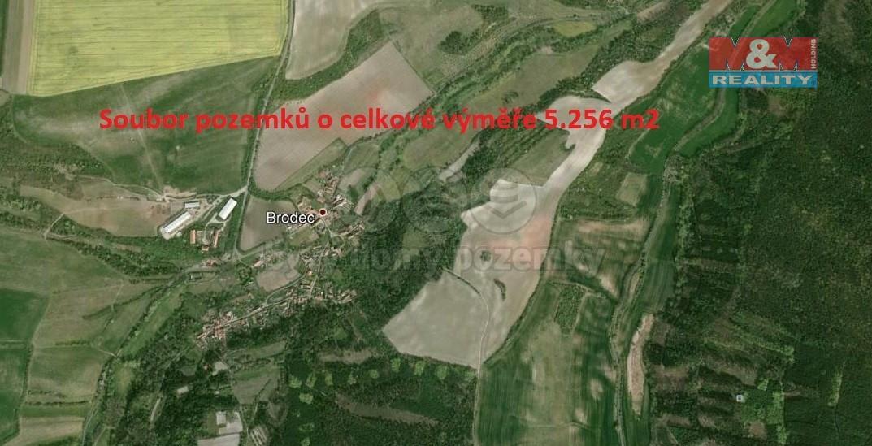 Prodej, louka, 5256 m2, Brodec