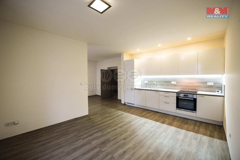Prodej, byt 2+kk, Hradec Králové, ul. Resslova