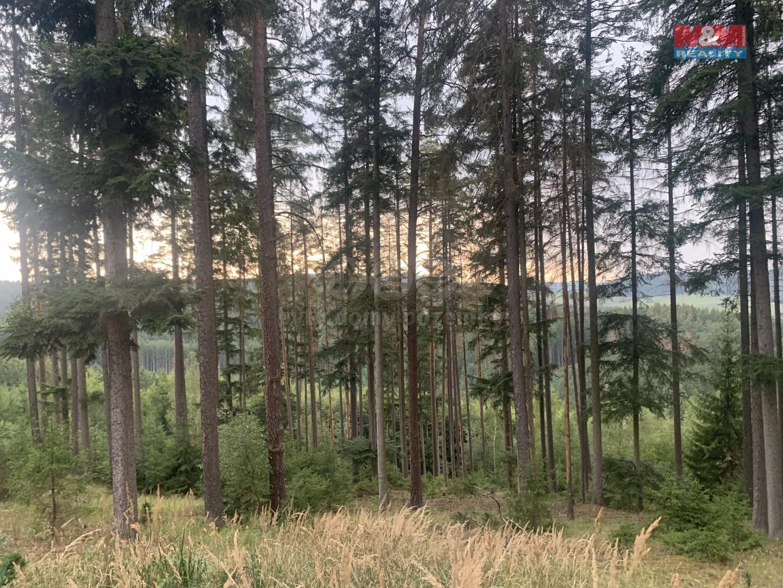 Prodej, les, 52789 m2, Městečko Trnávka