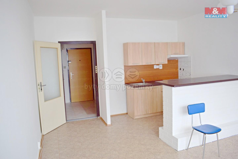 Pronájem, byt 1+kk, 30 m², Havířov, ul. Střední