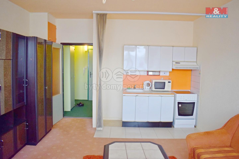 Pronájem, byt 1+kk, 30 m², Havířov, ul. Letní