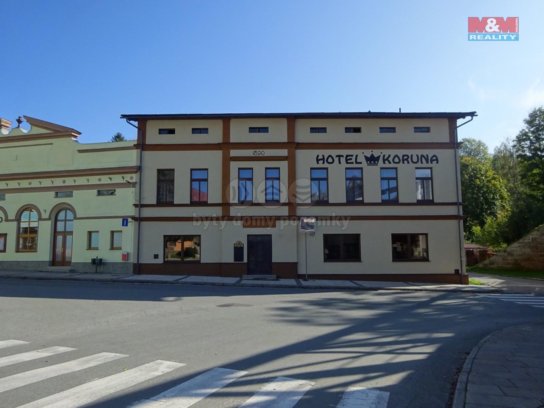 Prodej, hotel, penzion, Teplice nad Metují, ul. Horní