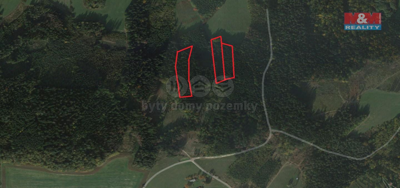 Prodej, les, 16566 m2, Mikulůvka