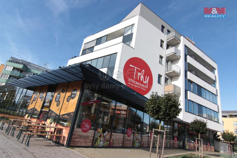 Prodej, byt 1+kk, 40 m2, Hradec Králové, ul. Ve Stromovce