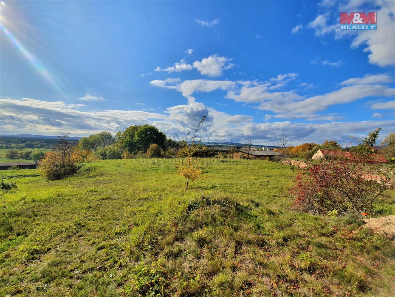 Prodej, pozemek, 3891 m2, Stanoviště, Mariánské lázně