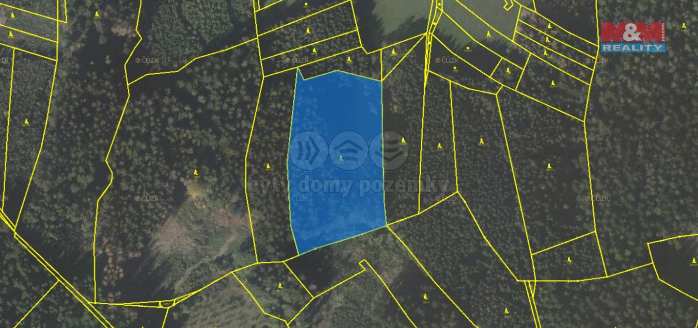 Prodej, les, 13545 m2, Mikulůvka