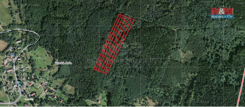 Prodej, les, 5925 m2, Místo - Vysoká Jedle