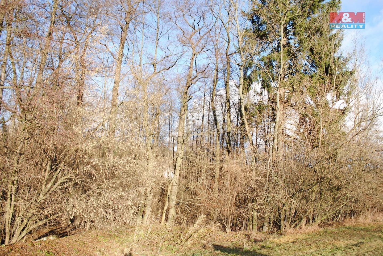 Prodej, les a vodní plocha, 6986 m2, Libecina