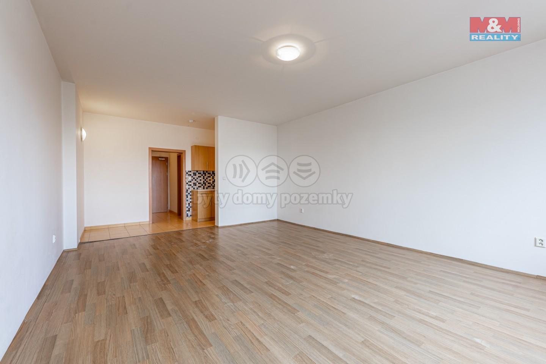 Pronájem, byt 1+kk, 45 m², Plzeň, ul. Koterovská