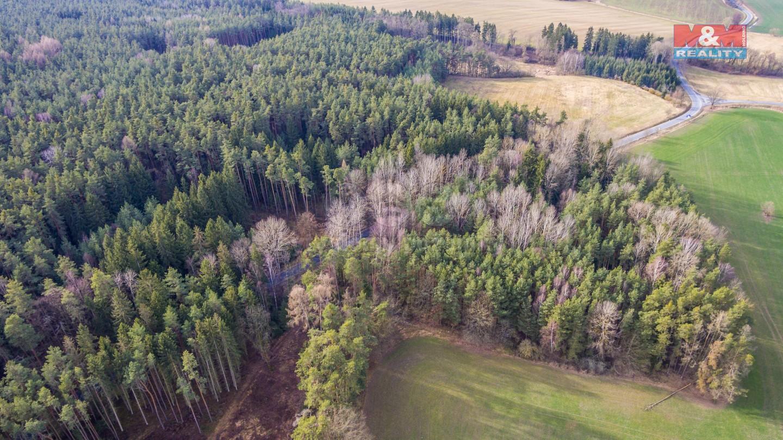 Prodej, les, 7052 m2, Štichov