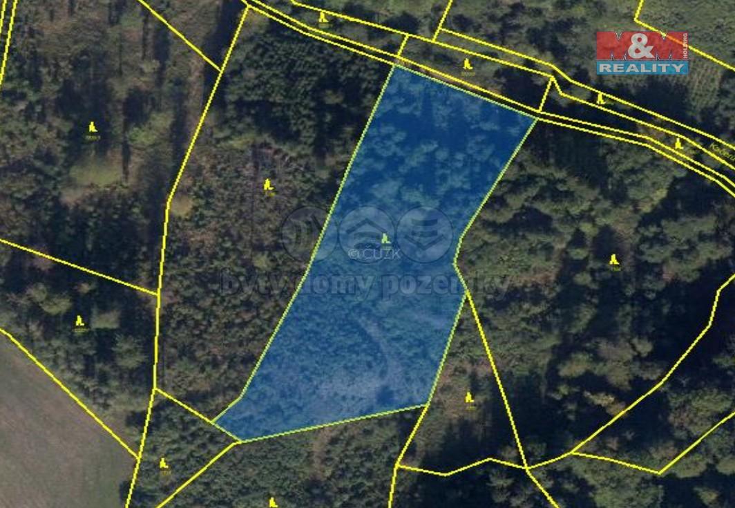 Prodej lesa, 32062 m², Horní Studénky