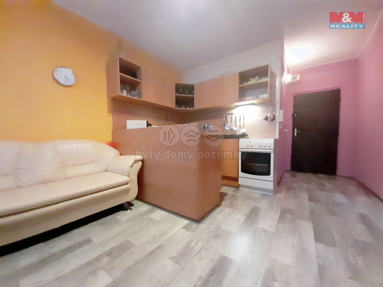 Prodej bytu 1+1, 36 m², DV, Chomutov, ul. Borová