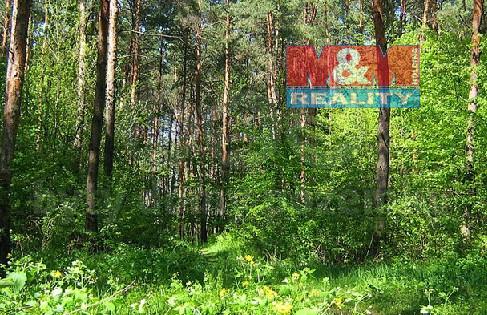 Prodej lesa, 14977 m², Kopřivnice