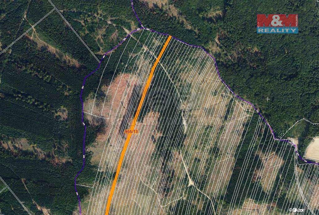 Prodej lesa, 5695 m², Nová Hradečná