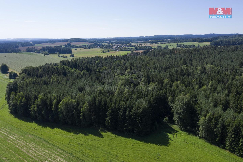 Prodej, les, 13238 m², Nová Ves u Světlé