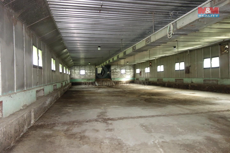 Pronájem skladu, 950 m², Miřetice, ul. Havlovice