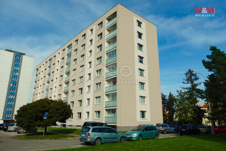 Pronájem bytu 1+1, Chrudim, ul. Husova