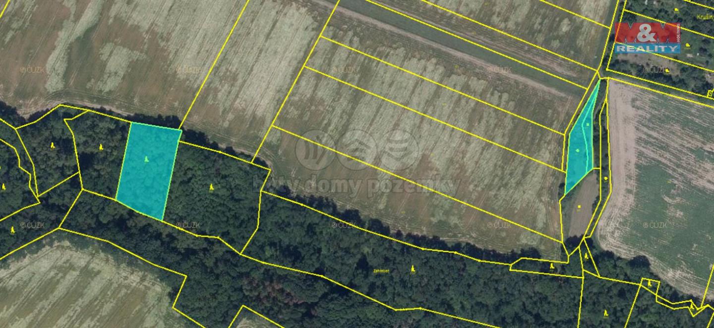 Prodej lesa, 4589 m², Velké Všelisy