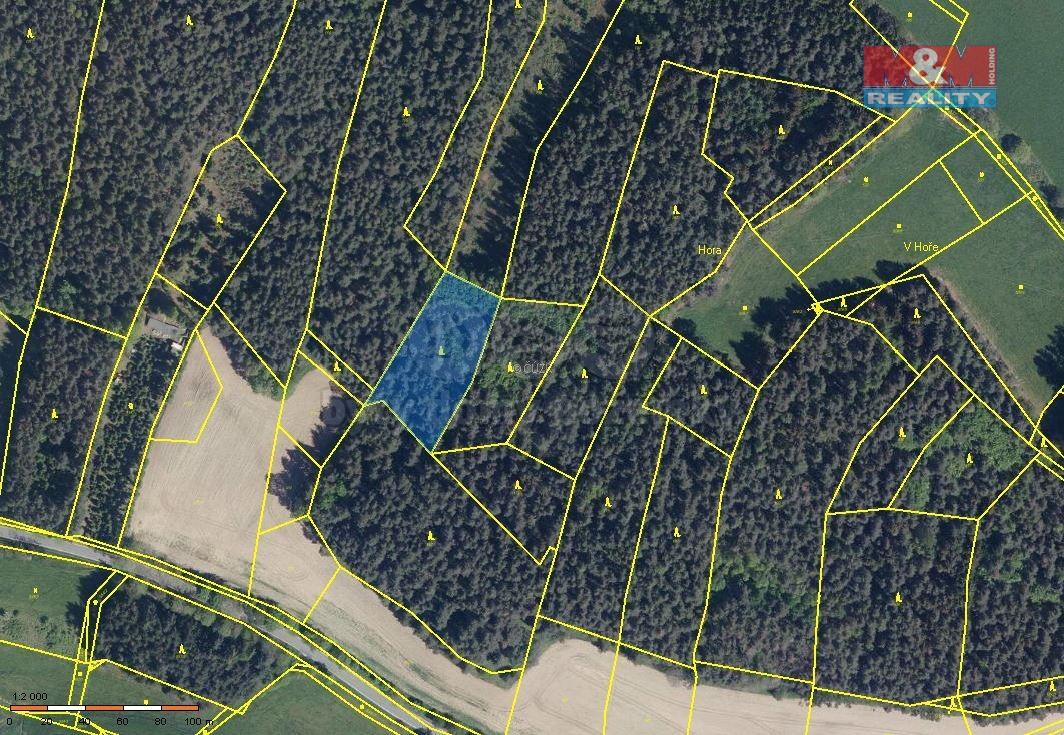 Prodej lesa, 3292 m², Litochovice