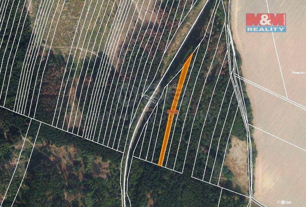 Prodej lesa, 5346 m², Nová Hradečná