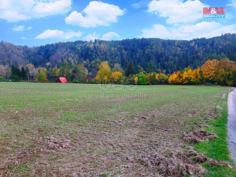 Prodej provozní plochy, 35.858 m2, Županovice