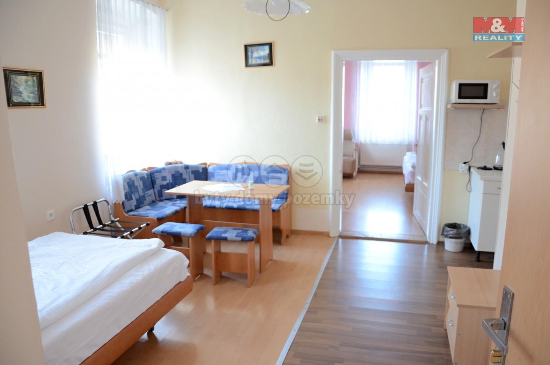 Pronájem, apartmán 1+1, 45 m2, Červená Voda - Mlýnický Dvůr