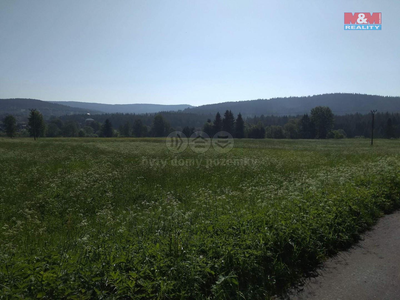 Prodej louky, 5744 m², Borová Lada