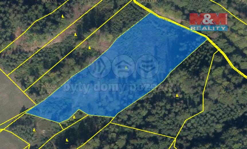 Prodej lesa, 29238 m², Horní Studénky