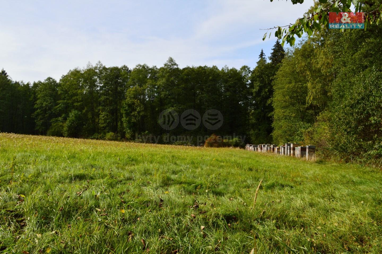 Prodej louky, 30040 m², Borovnička