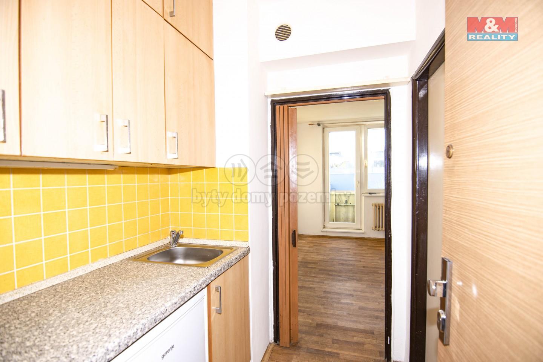 Prodej bytu 1+kk, 23 m², Brno, ul. Jedovnická