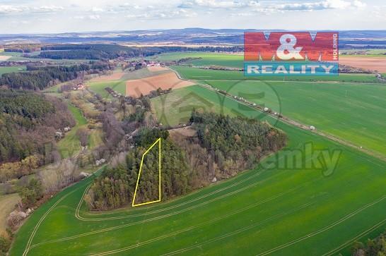 Prodej, les, 6271 m2, Hodyně, Buček, Plzeň - sever