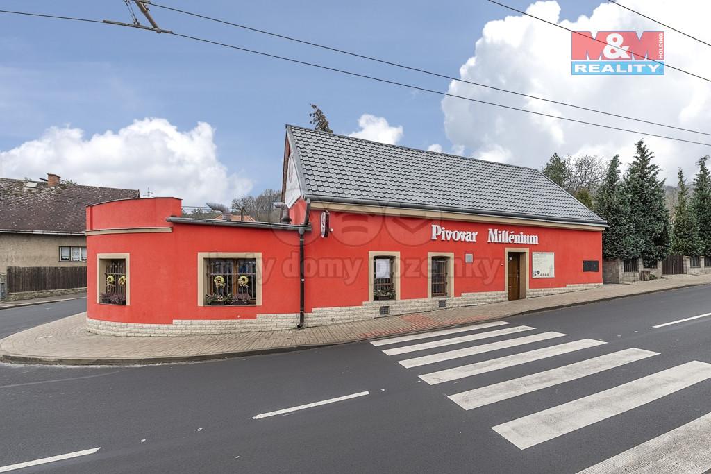 Prodej minipivovaru s barem, Ústí nad Labem, ul. Sibiřská