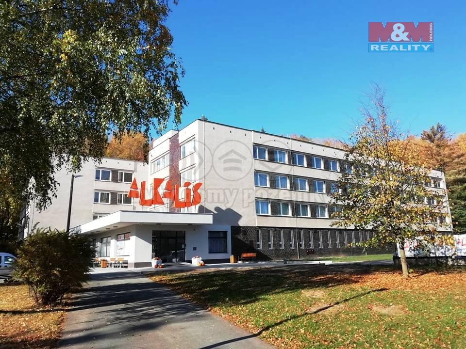 Pronájem bytu 1+kk, 25 m², Hronov, ul. Na Chocholouši