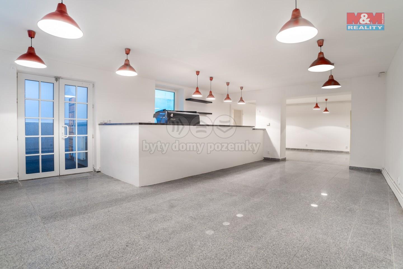 Prodej obchod a služby, 156 m², Liberec, ul. Jezdecká