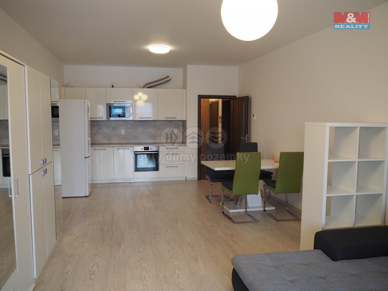 Pronájem bytu 2+kk, 73 m², Praha, ul. U Mlýnského kanálu