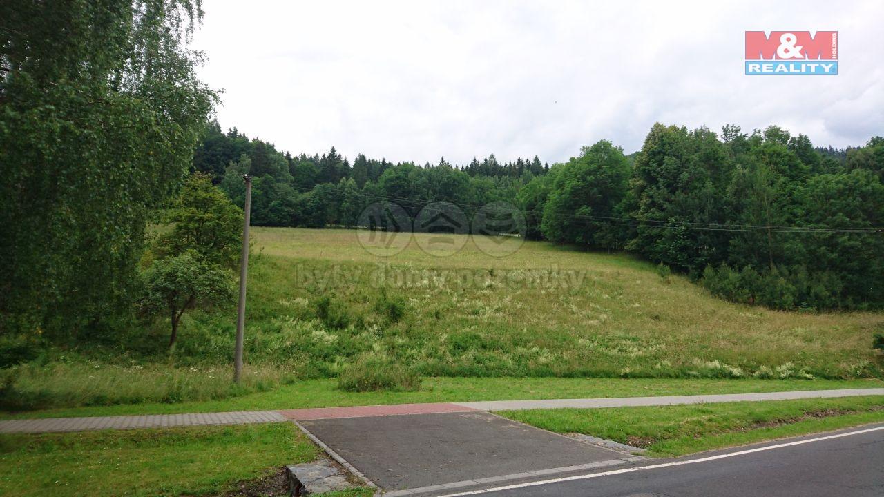 Prodej pozemku k bydlení, 2717 m², Ludvíkov