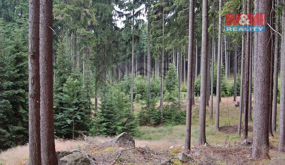 Prodej lesa, 27367 m², Letovice