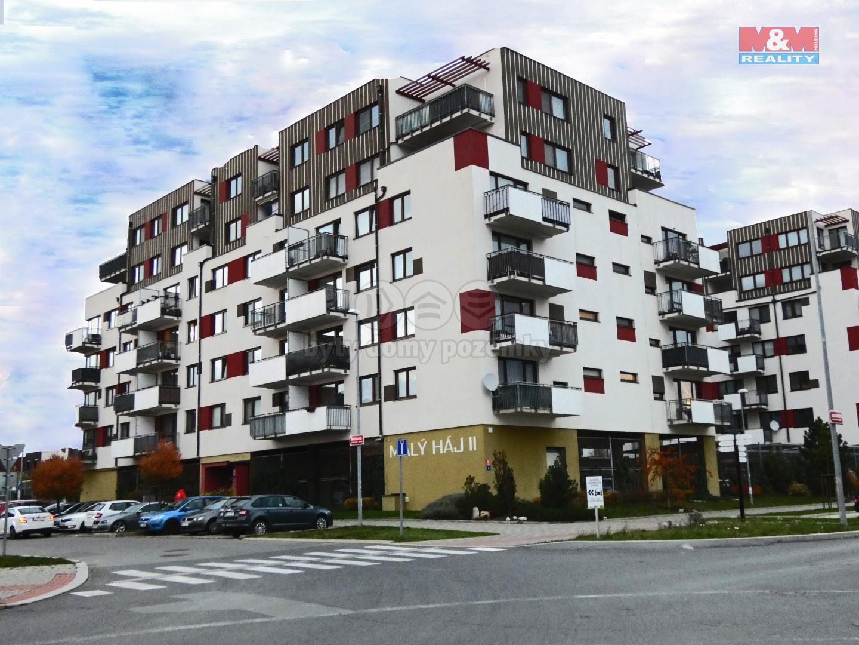 Pronájem bytu 2+kk, 54 m², Praha, ul. Kryšpínova