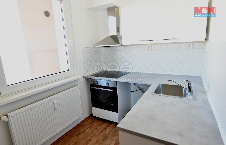Pronájem bytu 1+1, 39 m², Liberec, ul. Borový vrch